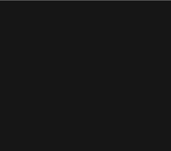 Brad V Photography